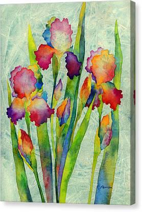 Iris Elegance On Green Canvas Print