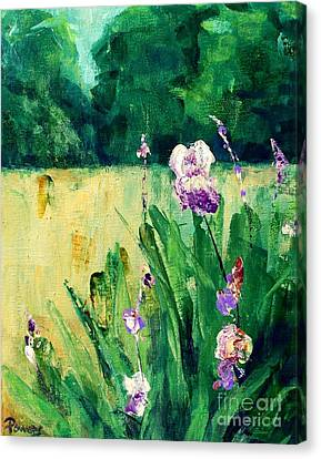 Iris Field Canvas Print by Mary Lynne Powers