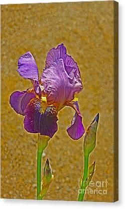 Iris Flower Canvas Print by Nur Roy