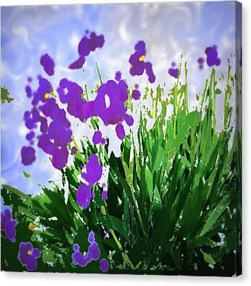 Iris Canvas Print by GuoJun Pan