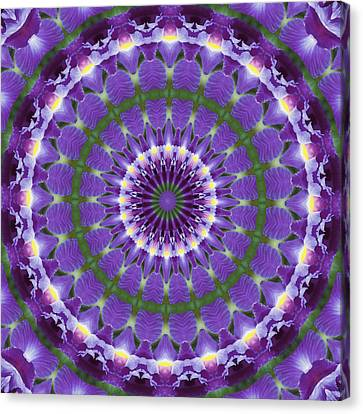 Iris Kaleidoscope  Canvas Print