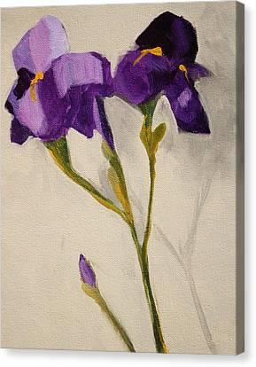 Iris Canvas Print by Nancy Merkle
