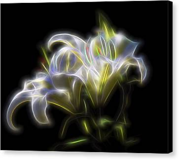 Iris Of The Eye Canvas Print by William Horden