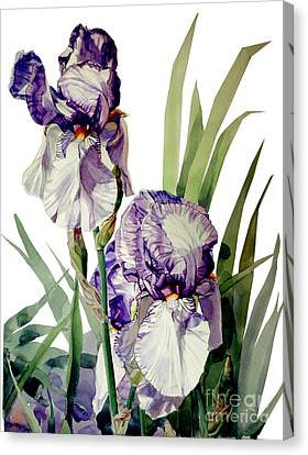 Watercolor Of A Tall Bearded Iris In Violet And White I Call Iris Selena Marie Canvas Print