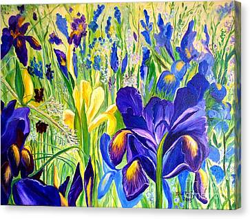 Iris Spring Canvas Print by Julie Brugh Riffey