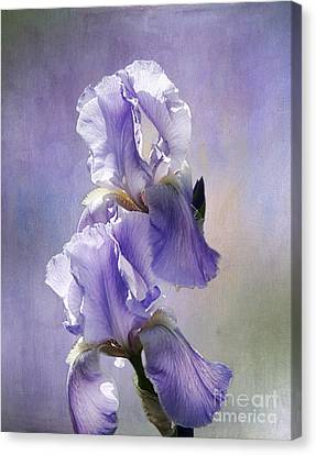 Canvas Print featuring the photograph Iris Twins by Vicki DeVico