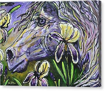 Iris Upon A Star Canvas Print by Jonelle T McCoy