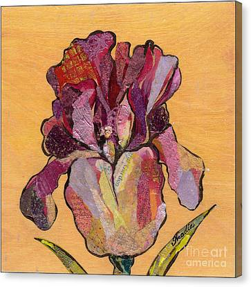 Iris V  - Series V Canvas Print by Shadia Derbyshire