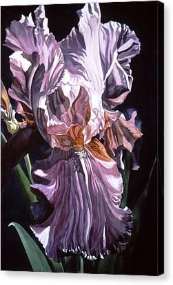 Iris With Light Canvas Print