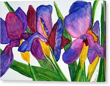 Irises Canvas Print