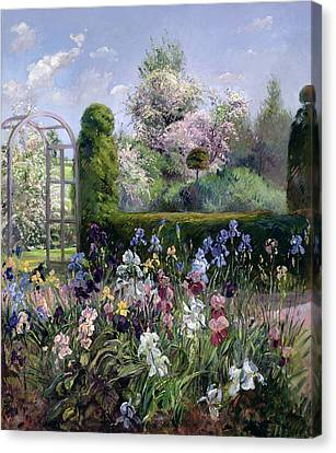 Irises In The Formal Gardens, 1993 Canvas Print by Timothy Easton