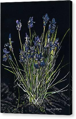 Irises Canvas Print by Robert Goudreau