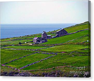 Irish Farm 1 Canvas Print by Patricia Griffin Brett