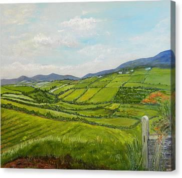 Irish Fields - Landscape Canvas Print by Sandra Nardone