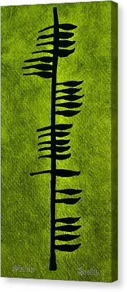 Irish Ogham Meaning Health Canvas Print