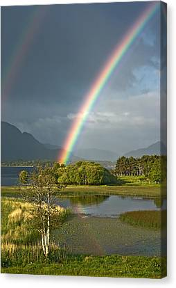 Irish Rainbow Canvas Print by Jane McIlroy