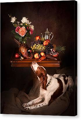 Canvas Print - Irish Red And White Setter With Fruits... by Tanya Kozlovsky