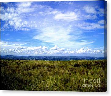 Irish Sky Canvas Print by Nina Ficur Feenan
