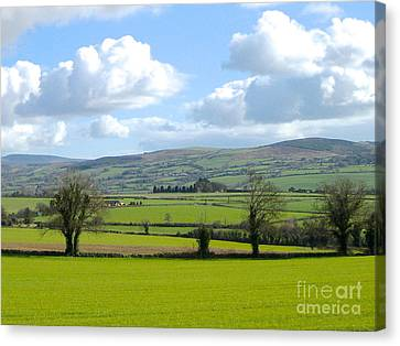 Irish Spring Canvas Print by Suzanne Oesterling