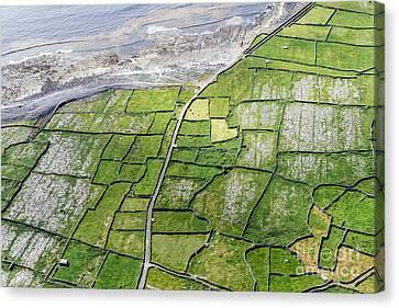 Irish Stone Walls Canvas Print by Juergen Klust