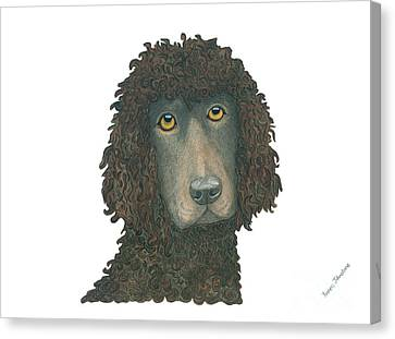 Irish Water Spaniel Canvas Print by Yvonne Johnstone
