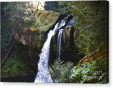 Iron Creek Falls Canvas Print