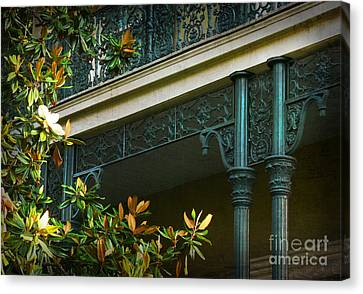 Iron Detail With Magnolia Tree Canvas Print