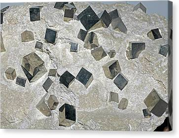 Pyrite Canvas Print - Iron Pyrite by Dirk Wiersma