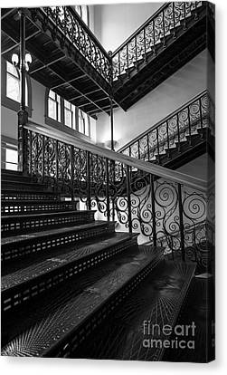 Iron Staircases Canvas Print by Inge Johnsson
