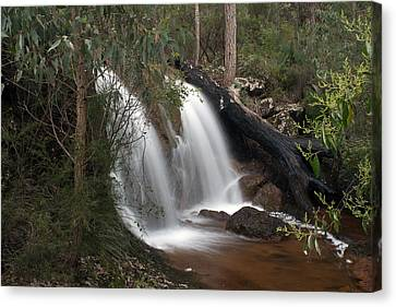 Ironstone Gully Falls 2 Canvas Print