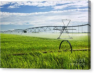 Irrigation On Saskatchewan Farm Canvas Print