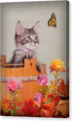 Is That Flower Flying? Canvas Print