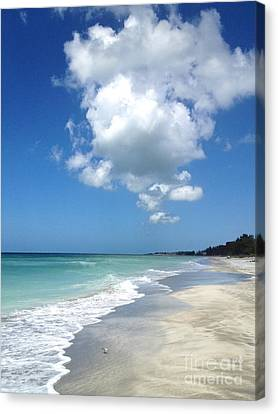 Canvas Print featuring the photograph Island Escape  by Margie Amberge