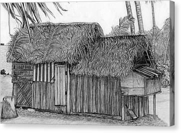 Canvas Print featuring the drawing Island House 1 by Lew Davis
