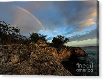 Island Rainbow Canvas Print