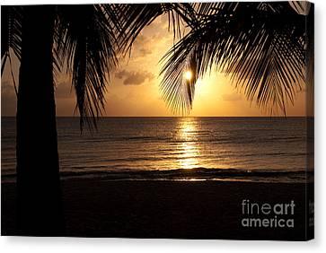 Island Sunset Canvas Print by Charles Dobbs