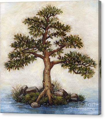 Island Tree Canvas Print