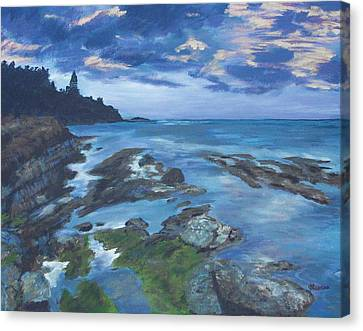 Isle Coast Canvas Print by Cynthia Morgan