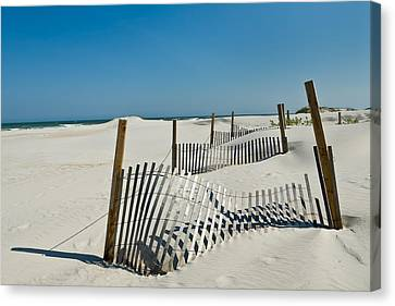 Isolated Dunes Canvas Print by Denis Lemay