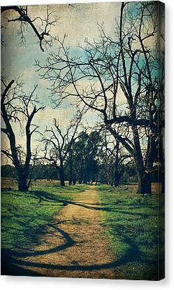 It All Depends Canvas Print by Laurie Search