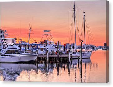 It Takes All Kinds In Destin Canvas Print by JC Findley