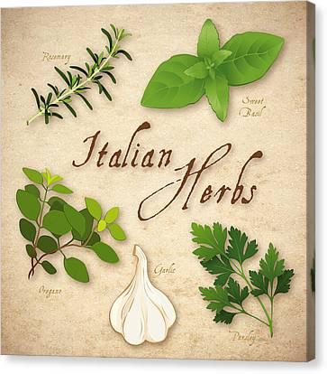Italian Kitchen Canvas Print - Italian Herbs by J M Designs