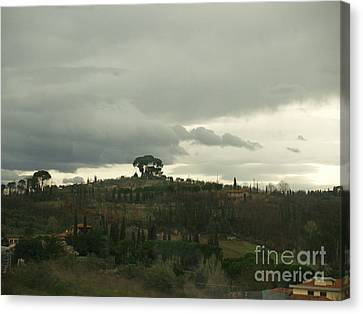 Canvas Print featuring the photograph Italian Hillside by Robin Maria Pedrero