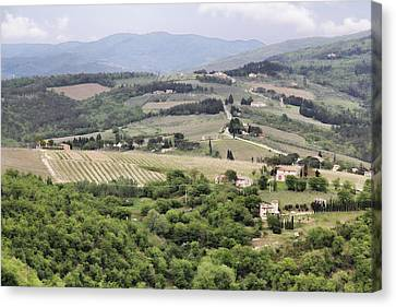 Italian Vineyards Canvas Print by Nancy Ingersoll