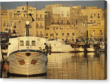 Italy, Sicily, Trapani, Fishing Port � Canvas Print by Tips Images