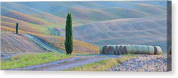 Italy, Tuscany Hay Bales And Farmland Canvas Print by Jaynes Gallery