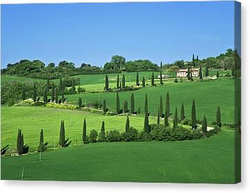 Italy, Tuscany, Multepulciano Canvas Print