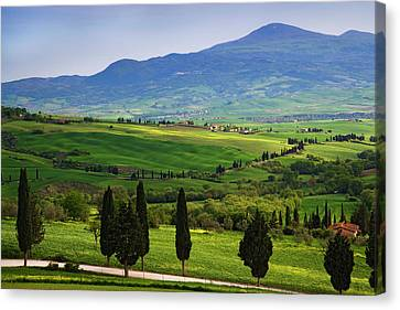 Italy, Tuscany Scenic Of The Tuscan Canvas Print