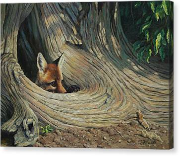 Fox - It's A Big World Out There Canvas Print by Crista Forest