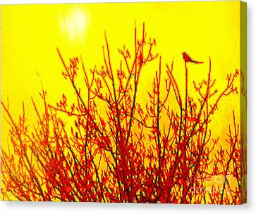 It's A Brand New Day Canvas Print by Cristophers Dream Artistry